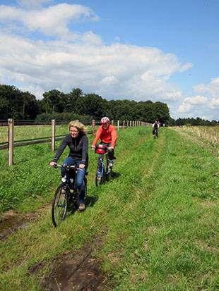 Fotos: Radfahrer durch Auenlandschaft