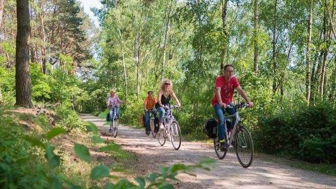 Von Osnabrück an die Sonnenseite des Teutoburger Waldes